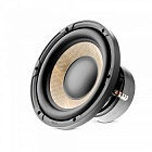 Focal Performance P 25FE